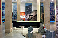"A view of the permanent exhibition ""Geology on the Upper Rhine"""