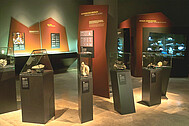 "A view of the permanent exhibition ""The realm of minerals"""
